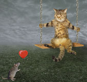 Cat on a swing and red balloon Royalty Free Stock Image