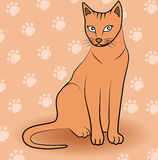 Cat symbol - kitten vector illustration Royalty Free Stock Photography