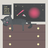 Cat on the table, space on the TV, the picture with inscription Cat, space, life is good on the wall. Stock Photos