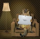 Cat with tablet on armchair. The clever cat with a tablet is sitting on a armchair royalty free stock photo