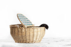 Cat Tail Basket Stockfotos