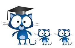 Cat teacher Royalty Free Stock Photography