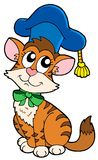 Cat teacher in hat Stock Photos