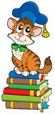 Cat teacher on pile of books Royalty Free Stock Images