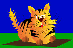Cat, tiger, tomcat, Stock Images