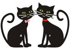 Cat and tomcat Stock Photo