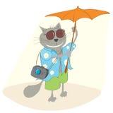 Cat tourists in a Hawaiian shirt Stock Image