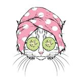 A cat in a towel and with cucumber on his face. Vector illustration. Beauty and spa treatments. Fashion & Style. Funny kitten. A cat in a towel and with stock illustration