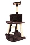 Cat toy house with ladder Stock Images