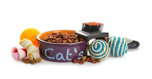 Cat toys and accessories on white background. Pet care Royalty Free Stock Image