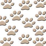 Cat tracks Royalty Free Stock Image