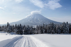 Cat tracks and Mount Yotei in niseko Stock Photography