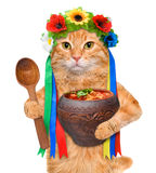Cat in the traditional Ukrainian costume holds in paws national red borsch . Royalty Free Stock Photography