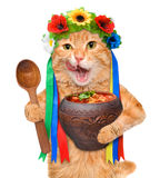 Cat in the traditional Ukrainian costume holds in paws national red borsch . Stock Photo