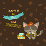 Cat traveler in suit with cup of coffee and Royalty Free Stock Photos