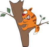 Cat on a tree. Cartoon Royalty Free Stock Photo