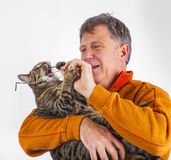 Cat trying to catch the glasses of a man Stock Photography