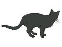 Cat Turned His Back preta Fotos de Stock Royalty Free