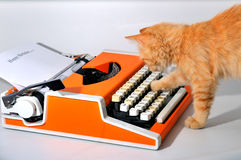 Cat and typewriter Royalty Free Stock Photography