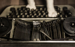 Cat typing on dirty, vintage typewriter. Cat`s paws on keyboard of old typewriter with types going up - high angle, monochrome Stock Photography