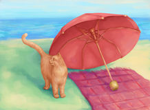 Cat and umbrella Stock Photography