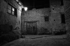 A cat under the Light. A cat under the street light at an old neighborhood Royalty Free Stock Photos