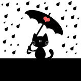 Cat under rain Royalty Free Stock Images