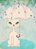 Cat under rain Royalty Free Stock Photos