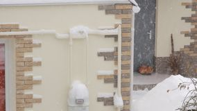 Cat Under The Snow