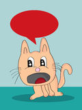 Cat Unhappy Royalty Free Stock Images