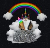 Cat unicirn eats ice cream in the sky