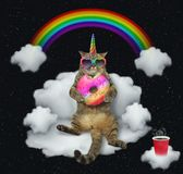 Cat unicorn with the color donut on a cloud 2 stock images
