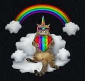 Cat unicorn with the color heart on a cloud stock illustration