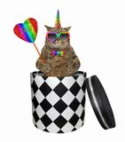Cat unicorn gets out of the box. The cat unicorn in a bow tie and sunglasses with a ruby heart on a stick is getting out of the gift box. White background royalty free stock photo