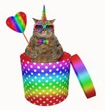 Cat unicorn in a gift box royalty free illustration
