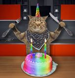 Cat unicorn with a birthday cake 2. The cat unicorn with a knife and a fork is going to eat a birthday cake with two candles on the kitchen royalty free stock photo