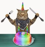 Cat unicorn with a birthday cake. The cat unicorn with a knife and a fork is going to eat a birthday cake. White background royalty free stock images