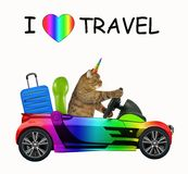 Cat unicorn loves to travel royalty free stock photography