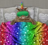 Cat unicorn with a sleep mask in the bed