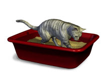 Cat Using Litter Box Royalty Free Stock Photography