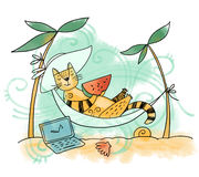 Cat on vacation Stock Images