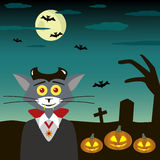 Cat a vampire in the cemetery Stock Photos