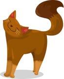 Cat vector Stock Image