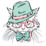Cat vector. Cartoon cat. Cute cat in the clothes. Hip-hop. Cat in a cap and glasses. Hipster. Postcard with the cat. Royalty Free Stock Photos