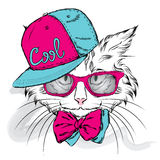 Cat vector. Cartoon cat. Cute cat in the clothes. Hip-hop. Cat in a cap and glasses. Hipster. Postcard with the cat. Royalty Free Stock Image