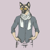Cat vector illustration Stock Images