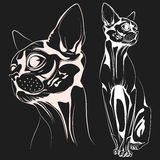 Cat vector Stock Images