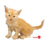 Cat vector silhouette on the white background isolated, made in low poly style. Little baby cat with an angry look Stock Photo