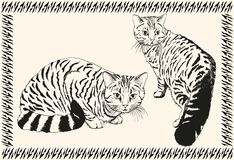 Cat. vector sketch Royalty Free Stock Image
