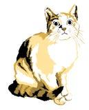 Cat 01 Stock Image